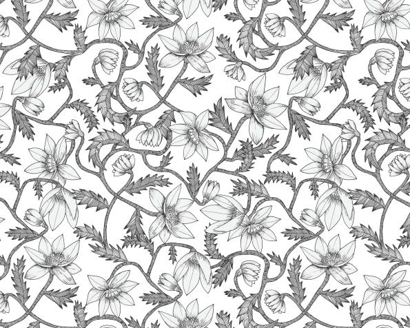 4_ll34f_wild-flowers_1617015718-144fab65debd154b67a2c99569264222.jpg