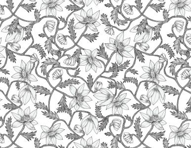 4_ll34f_wild-flowers_1617015718-62d1e4354bb01bb8c6a712844a91b2ac.jpg